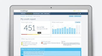 Credit Report image